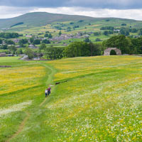 Yorkshire walking holidays at Hawes Meadows